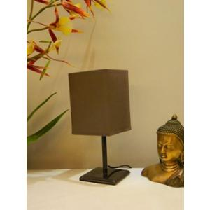 Tucasa Metal Table Lamp with Brown Cotton Shade, P1-F-4