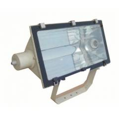 C&S 2X250W HPSV-T/MH-T Flood Light, LTFN002