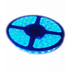 RYNA LED Strip Light Blue Colour with LED Driver-5m (Non/Without Water Proof) (Pack of 1)