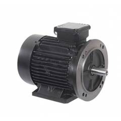 Bharat Bijlee 0.75HP 2 Pole Squirrel Cage Induction Motor, 2J0802B3
