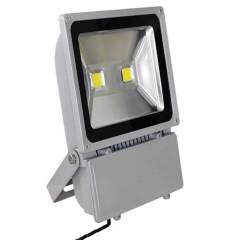 Best Deal 100W Red Flood Light