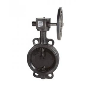 Sant 6 Inch Cast Iron Butterfly Valve, CR 21A