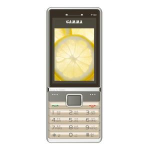 Gamma P100 Gold Dual SIM Feature Phone