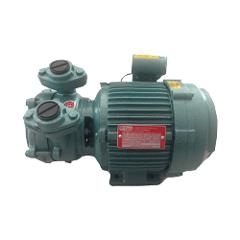 Texmo Taro 0.5HP Single Phase Self Priming Monoblock Pump, THR525H