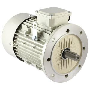 Kirloskar 5 HP Double Pole KI-100L, Flange Mounted 3 PhaseTEFC Motor