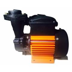 CRI DORA100  1HP Single Phase Water Pump