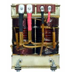 Buy Bhurji 1kW Single Phase AC Inverter Transformer, Input