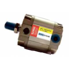 Techno 20x100mm ADVU Male-Female Magnetic Double Acting Cylinder