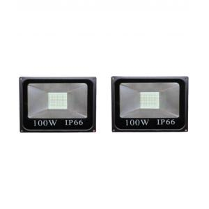 PP 100W Pearl White LED Flood Light (Pack of 2)