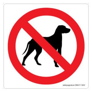 Safety Sign Store No Dogs Graphic Sign Board, CW617-210AL-01