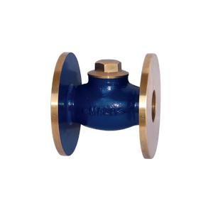 Mala Bronze Horizontal Lift Flanged Check Valve, MM-108, Size: 2 1/2 Inch