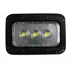 Grenoble 160W Cruizer Flood Light, CFL160W