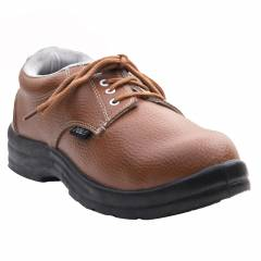 Polo Derby Steel Toe Brown Safety Shoes, Size: 6