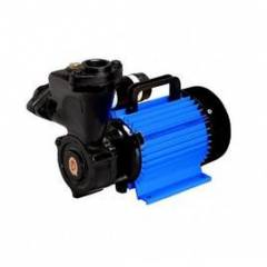CRI 1 HP Domestic Water Pump, Royale100