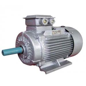 Bharat Bijlee 75HP 2 Pole Foot Mounting Squirrel Cage Induction Motor, 2J28S213