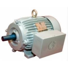 Crompton 1 Phase 5 HP 4 Pole Foot Mounted Induction Motor, GF7005