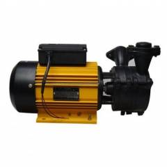 CRI 1.5HP Monoblock Domestic Pumps, Champee 150