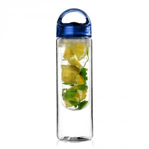 Dizionzrio Blue Fruit Infuser Water Bottle