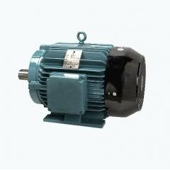 Crompton Greaves 300HP 4 Pole EFF. Level 2 Foot Mounted AC Motor, Frame: ND355LX