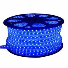 EGK 20m Blue 3014 SMD LED Rope Light with Adapter
