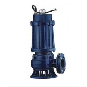 Blairs 1HP Cast Iron Double Channel Sewage Pump, CSVP 10-10-0.75