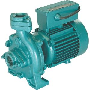 CRI 1HP Monoblock Domestic Pumps, Acm-28
