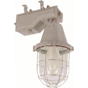 C&S 125W HPMV Well Glass Light-LTIW001