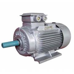 Bharat Bijlee 200HP 2 Pole Squirrel Cage Induction Motor, 2J31L2A3