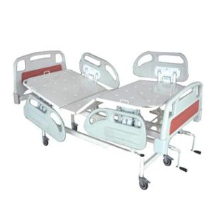 Wellton Healthcare Fowler Type Hospital Bed with ABS Panel, WH-505